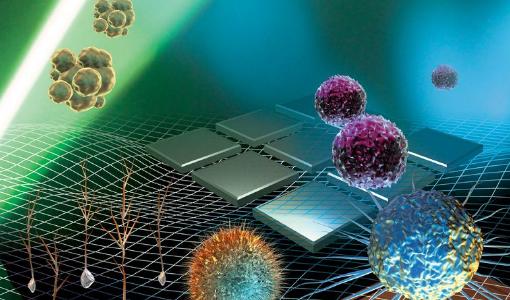 病理細胞に基づく癌診断、AI + デジタル病理分析会社「迪英加」(Tianyancha)は A ラウンドで数千万人民元の資金調達を受ける