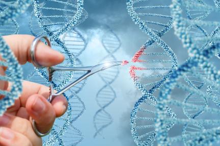 ゲノム創薬の「Exegenesis Bio」:約11億円を調達