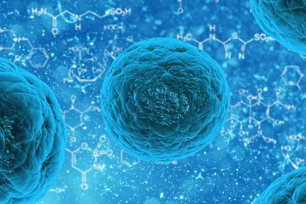 がん治療薬開発の「開拓薬業」:約49億円を調達