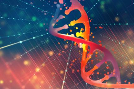 遺伝子検査技術の「臻和科技」:シリーズD1で約45億円を調達