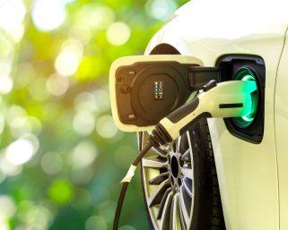 1月の中国新エネルギー車販売が54%減、自動車部品供給も停滞 政府は緊急支援策を検討