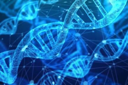 AI活用の創薬ベンチャー「neoX」が約10億円の資金調達、米メルクなどと共同開発へ