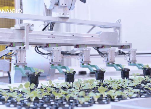 高層ビル内部で農業、中国新興企業が米国など世界各国に自動化栽培技術を提供