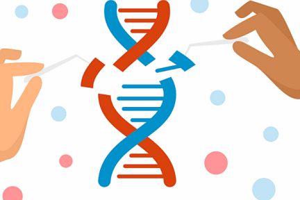 ゲノム編集技術のリーディングカンパニー「EdiGene」、約70億円を調達
