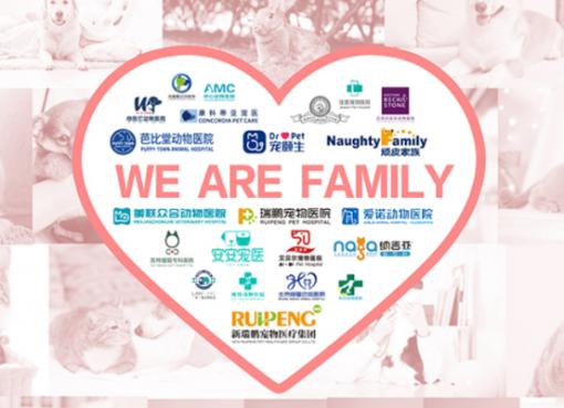中国最大のペット病院グループ「New Ruipeng」が数百億円の資金調達 テンセントも出資