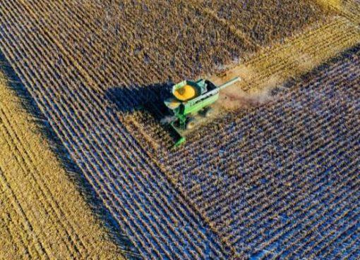 1億件の育成データをAIで分析 中国新興、ジャガイモの栽培からサプライチェーンまで最適化支援