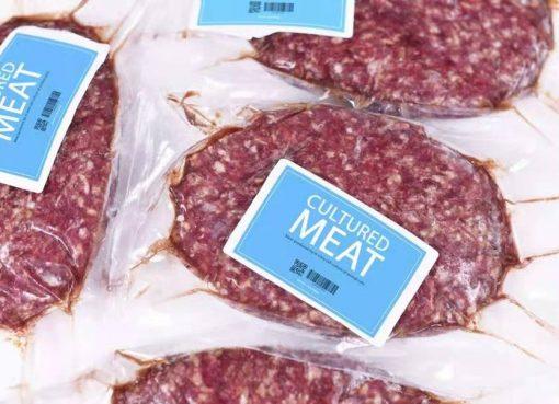 3Dバイオプリンティング技術で培養肉生産、人工肉企業「CellX」が数千万円調達